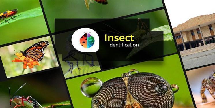 100 گونه جدید جانوری در دانشگاه تربیت مدرس ثبت جهانی شد