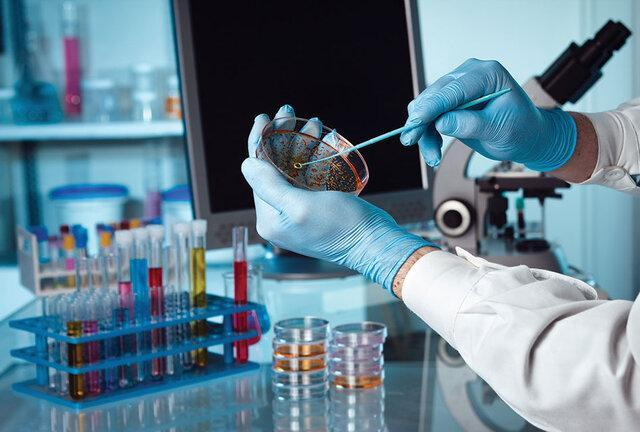 اجرای طرح های تحقیقاتی بر روی پروتئین های ضد میکروبی در دانشگاه علوم پزشکی مشهد