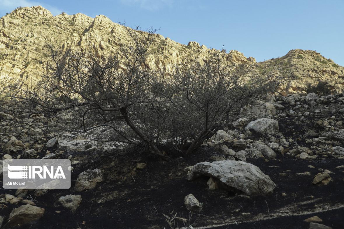 خبرنگاران مهار آتش در ارتفاعات ایذه
