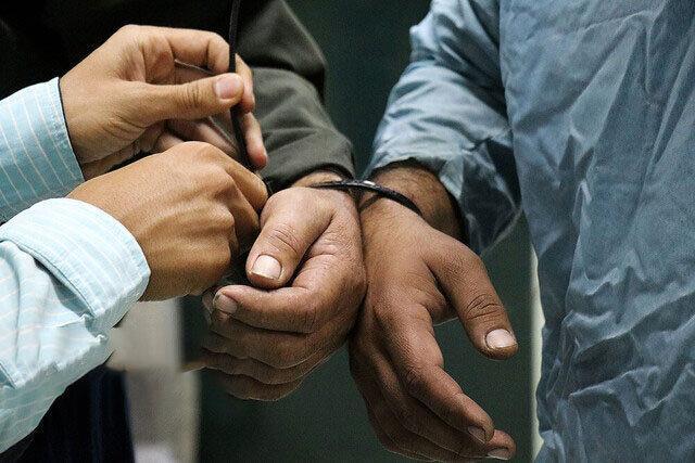 انهدام باند فساد مالی در حوزه توزیع آرد و نهاده های دامی