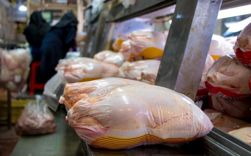 وعده وزارت صمت درباره قیمت مرغ