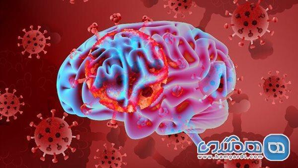 کروناویروس می تواند وارد مغز گردد
