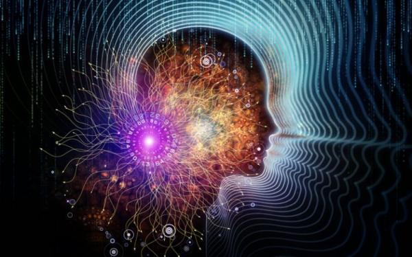 14 ایده تحقیقاتی برای توسعه محصولات شناختی عرضه شد